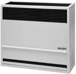 Williams 3003821 30,000 BTU Direct Vent Wall Furnace Heater
