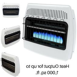Indoor Vent Free Liquid Propane Space Heater 30K Btu Blue Fl