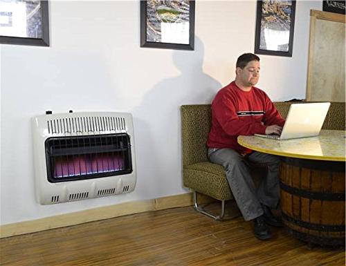 Mr. Heater 30,000 BTU Blue Heater One Size Multi
