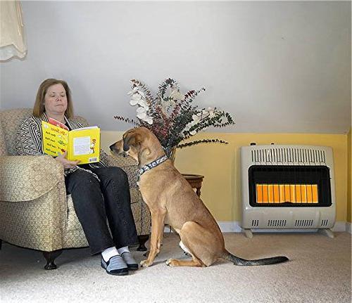 Mr. BTU Propane Heater Multi