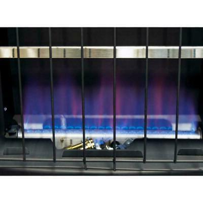 Liquid Heater 30000 BTU Free Blue Home Room