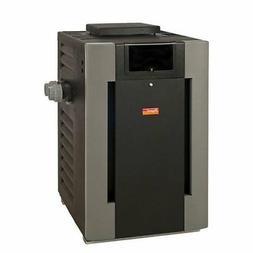RayPak P-R206-A-EP-C Digital Propane Pool Heater, 206 BTU